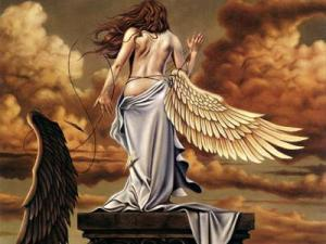 angel-s-fall-royo